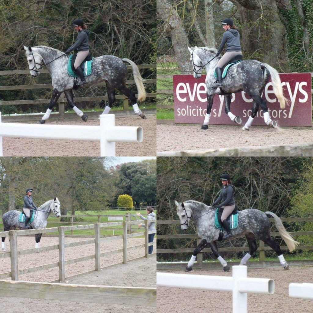 Jack at Bicton Eventers Camp